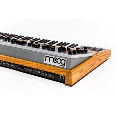 moog-music-the-one-16-voice