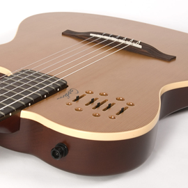 Godin Multiac Nylon Encore Natural SG | Ozvučena...