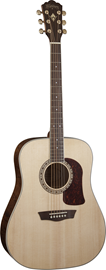 Washburn HD30S Natural