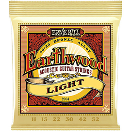 Ernie Ball 2004 Earthwood 80/20 Bronze Light .01...